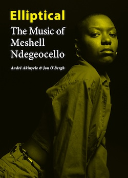 "Exploring a musical masterpiece in ""Elliptical: The Music of Meshell Ndegeocello"""